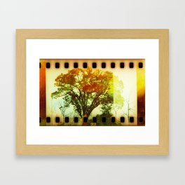 life of tree Framed Art Print