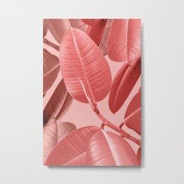 Ficus elastica in orange Metal Print