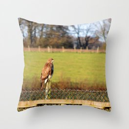 The Buzzard Throw Pillow