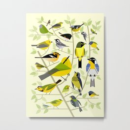 New World Warblers 1 Metal Print