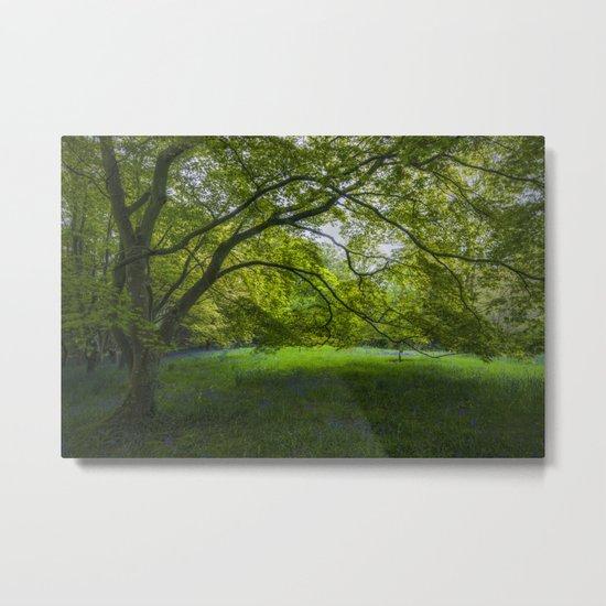 Bluebell Meadow Metal Print
