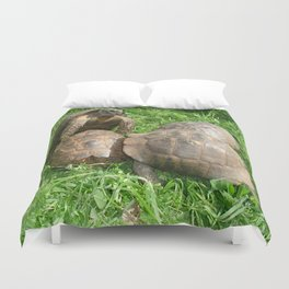 Bullied into Submission - Mating Tortoises Duvet Cover