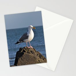 Seagull on rock Stationery Cards