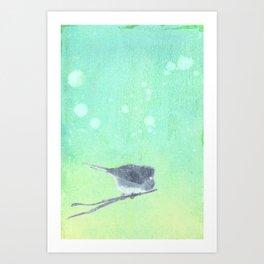 Junco Inked Art Print