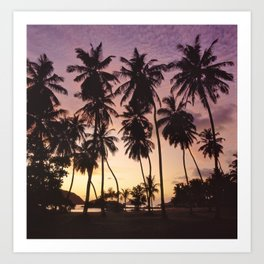 Palm trees on the Seychelles Art Print
