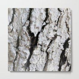 bark abstact no6 Metal Print