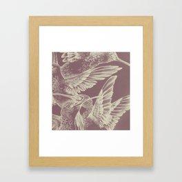 Pink HummingBirds Framed Art Print