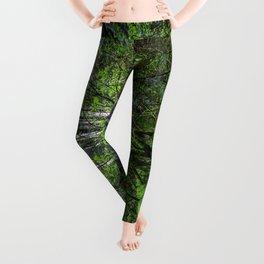 Forest Greenery  Leggings