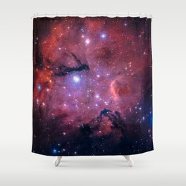 The Universe Awaits Shower Curtain