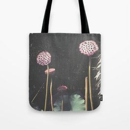 Lotus Seed Heads Tote Bag