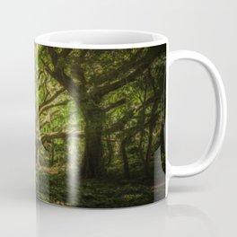 The old wizard Coffee Mug