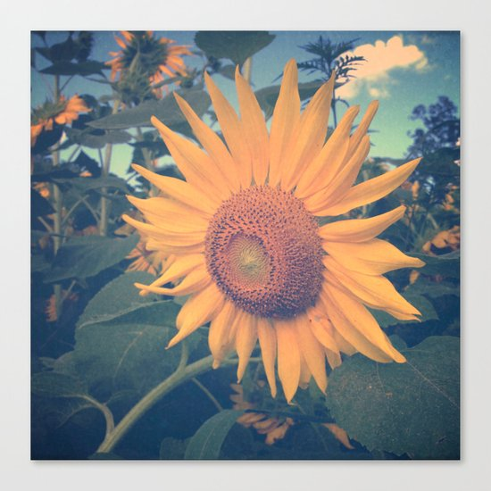 Oh Happy Day Canvas Print