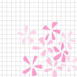 Notebook - 02_01_125 - ElisaGabi
