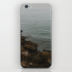Foggy Ocean iPhone & iPod Skin