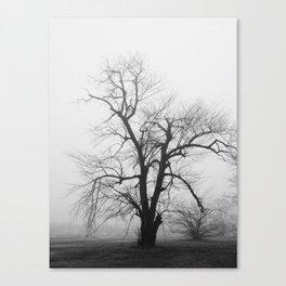 Bare Branches in Winter Fog 2 Canvas Print