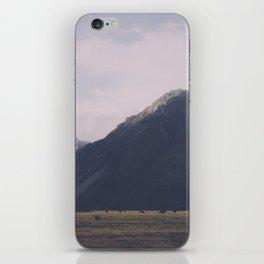 Vintage Mountain 16 iPhone Skin