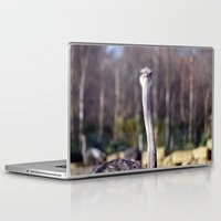 ostrich Laptop & iPad Skins featuring Ostrich by JBuck
