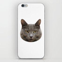 Mango, the cat iPhone Skin