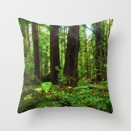 A Glimpse of the Redwoods. Throw Pillow