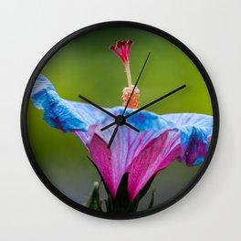 Flower Photography by Abhinav Srivastava Wall Clock