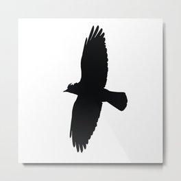Jackdaw In Flight Silhouette Metal Print