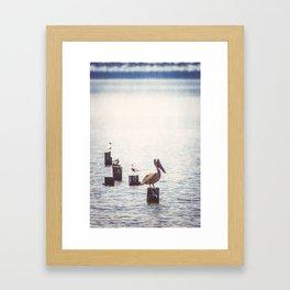 Gulf Coast Peace Framed Art Print