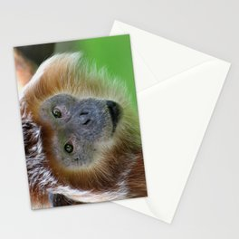 Javanese Langur Stationery Cards