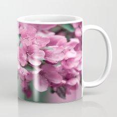 Pink Cherry Blossoms Mug