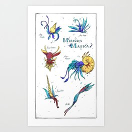 Mollusca Magica Art Print