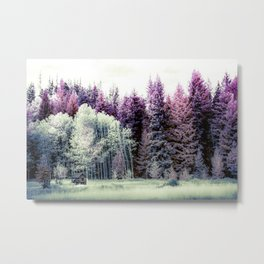 Tiny Cabin Among The Large Forest, Montana Metal Print