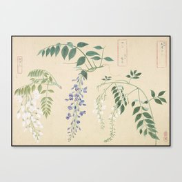 Japanese Botanical Ink and Brush Painting, Hand Drawing Flowers and Calligraphy Canvas Print