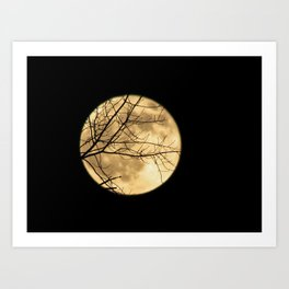 Shadows on the Moon Art Print