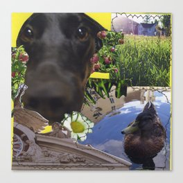 Callie and a Duck Canvas Print