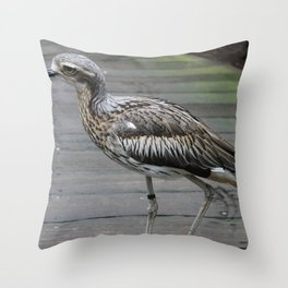 Bush stone-curlew Throw Pillow