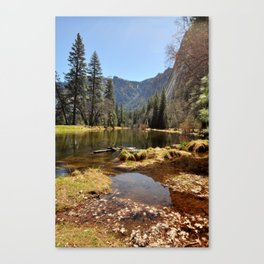 Spring On The Valley Floor Canvas Print