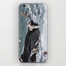 Gulls shop for Dinner iPhone Skin