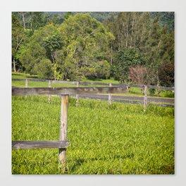 Broken fence in a rural area Canvas Print