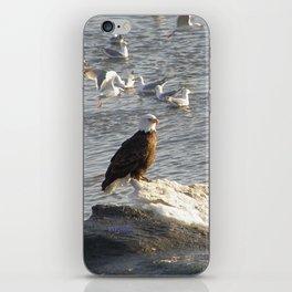 Eagle on Ice iPhone Skin