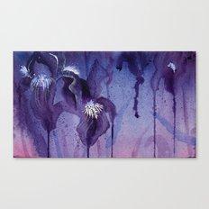 Iris, Blue and Purple Flowers Canvas Print