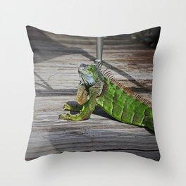 Cayman Iguana II Throw Pillow