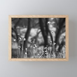 Wildflowers in the Mountains Framed Mini Art Print