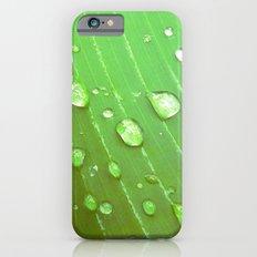Jungle Drops. Slim Case iPhone 6s
