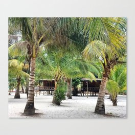 Bungalows on Palm Beach Canvas Print