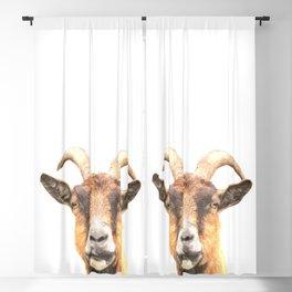 Goat Portrait Blackout Curtain