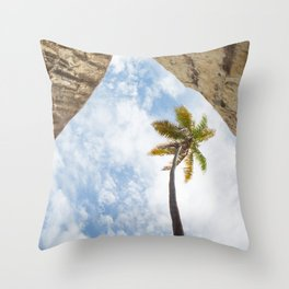 Virgin Gorda Batholithic Boulders and a Sunny Palm Tree Throw Pillow