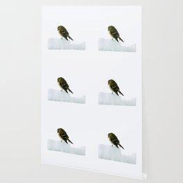 Mourning Prayer (Goldfinch) Wallpaper