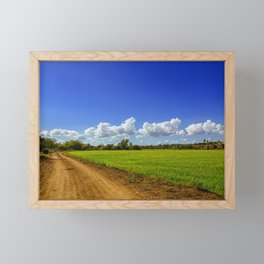 Rice Field Framed Mini Art Print