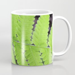Growing Fern Coffee Mug
