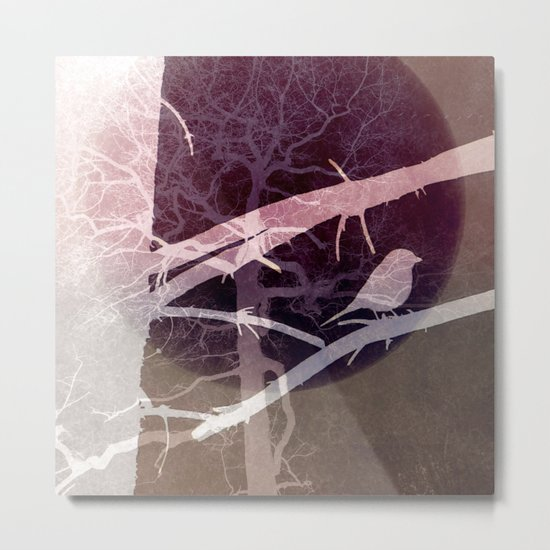 Natural experiment Metal Print