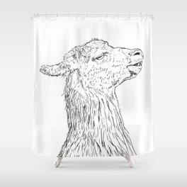 El Meo De La Gloria Shower Curtain